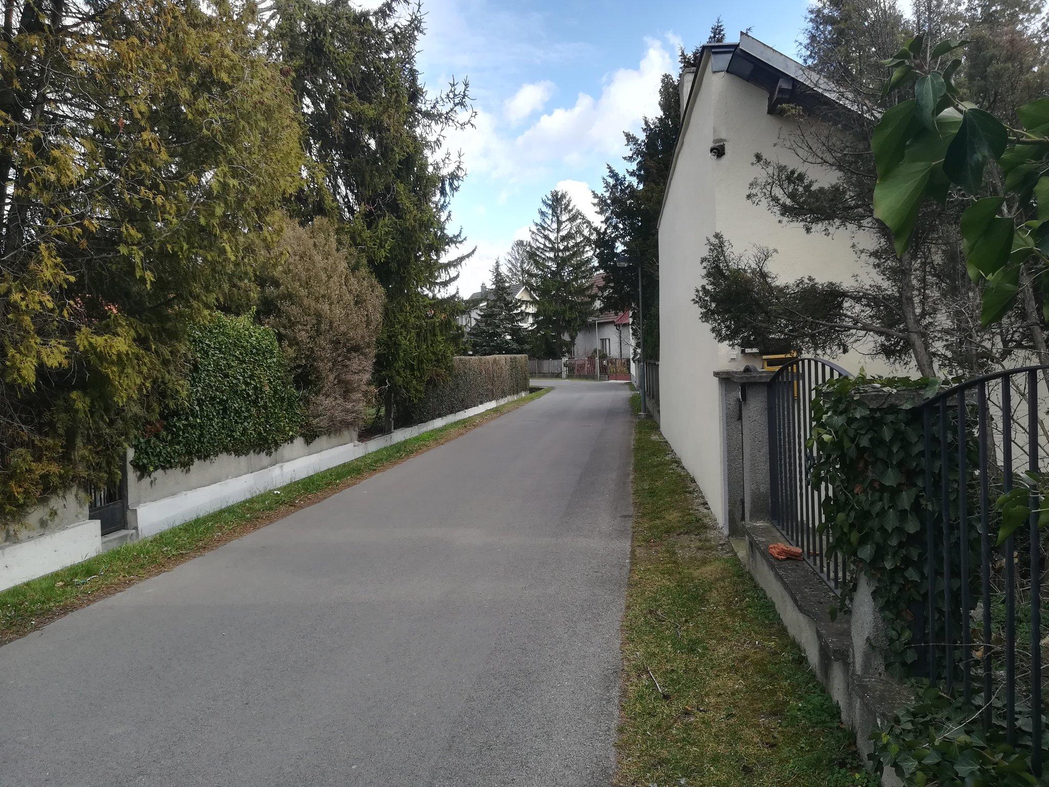 Weigelsdorf single frauen. Partnersuche gaggenau