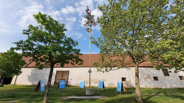 Studenten singlebrse in neukirchen an der enknach