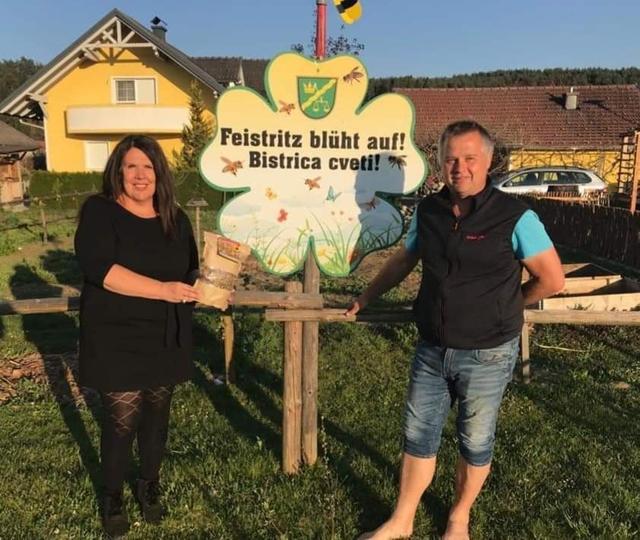 Anfrage Skigebiet Petzen - Feistritz ob Bleiburg in sterreich