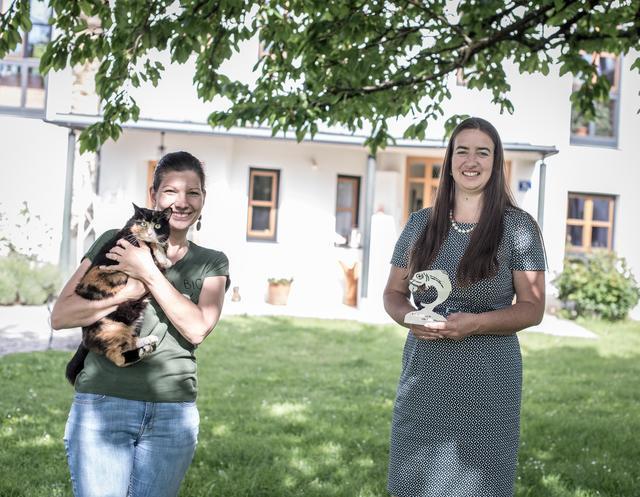 Singlebrse Klagenfurt Partnersuche Frauen - volunteeralert.com