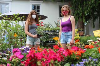 Bad sauerbrunn kostenlose singlebrse Dating service virgen