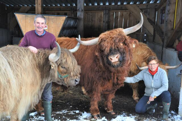"""Bernhard and Theresia Pirchner from Froguttal in Rouris want their Scottish Highland cattle """"Never remember a day""""."""