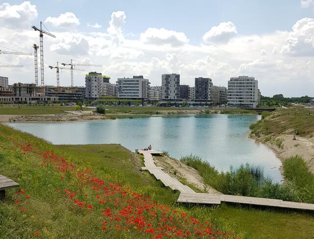 Die Spange Seestadt Aspern soll an das bestehende Wiener Straßennetz angebunden werden.