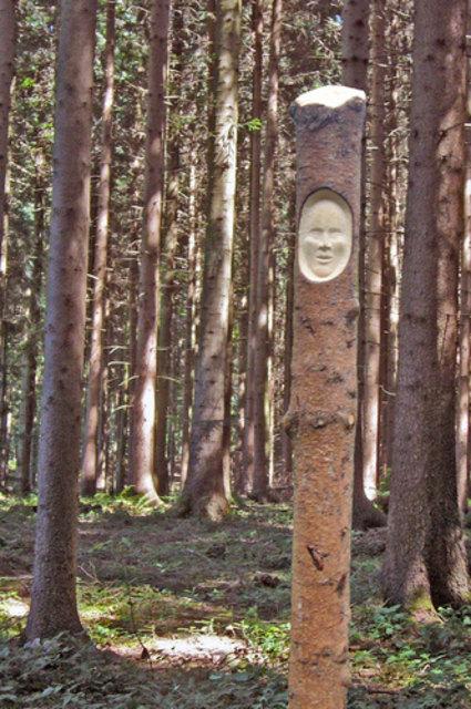 Das Gesicht im Baum entstand beim Symposium 2017. Es ist von Elfriede Vitzthum: Collage 1.