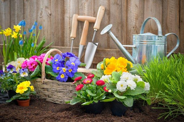 Schlägler Biogespräch Mein Garten Tut Mir Gut
