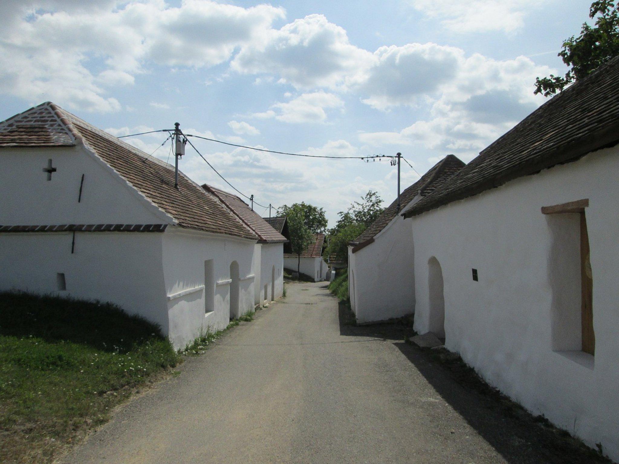 Schachgruppe Zellerndorf - Zellerndorf - RiS-Kommunal
